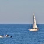 Bocale(Rc) spiaggia Calypso: barche a vela in mare